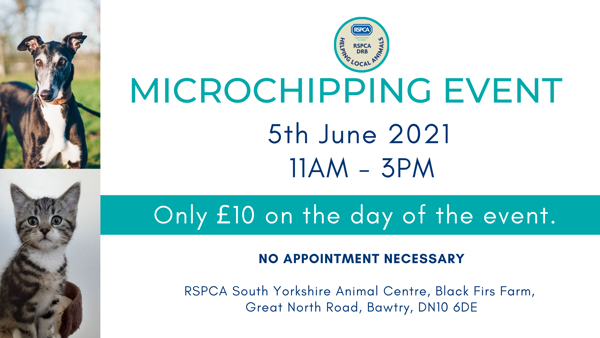 Microchipping Event