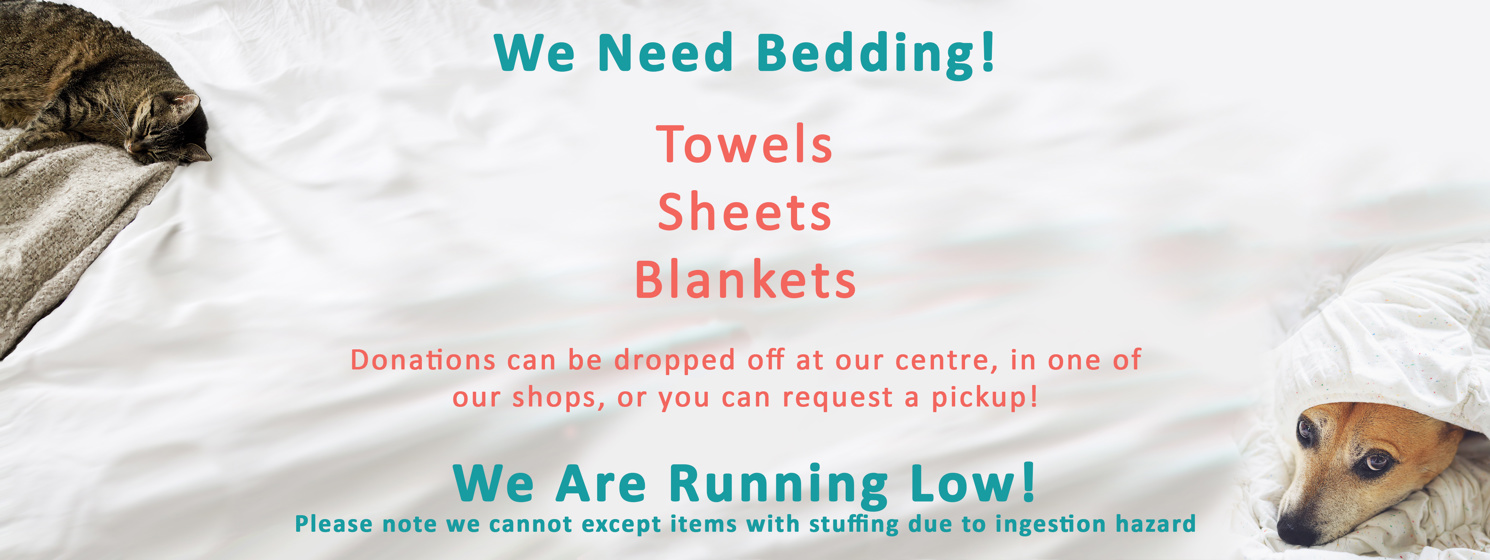 We Need Bedding