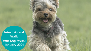 International Walk Your Dog Month